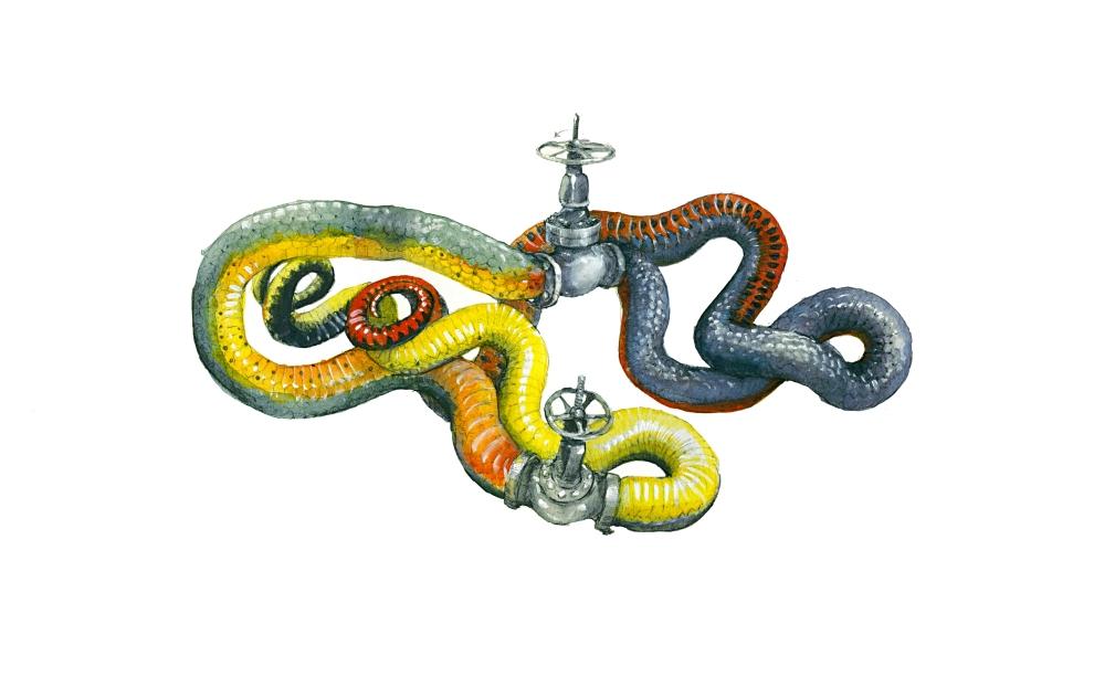 snake slave valve